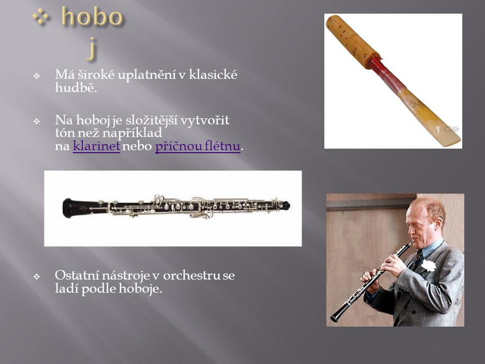 Má široké uplatnění v klasické hudbě.  Na hoboj je složitější vytvořit tón než například na klarinet nebo příčnou flétnu. klarinetpříčnou flétnu 