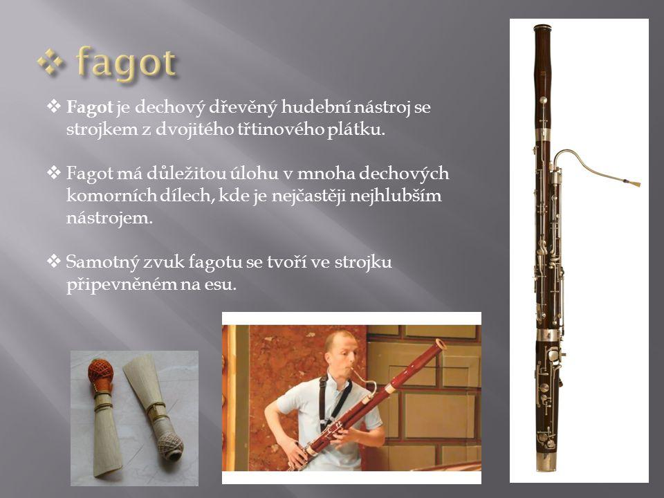  Fagot je dechový dřevěný hudební nástroj se strojkem z dvojitého třtinového plátku.  Fagot má důležitou úlohu v mnoha dechových komorních dílech, k