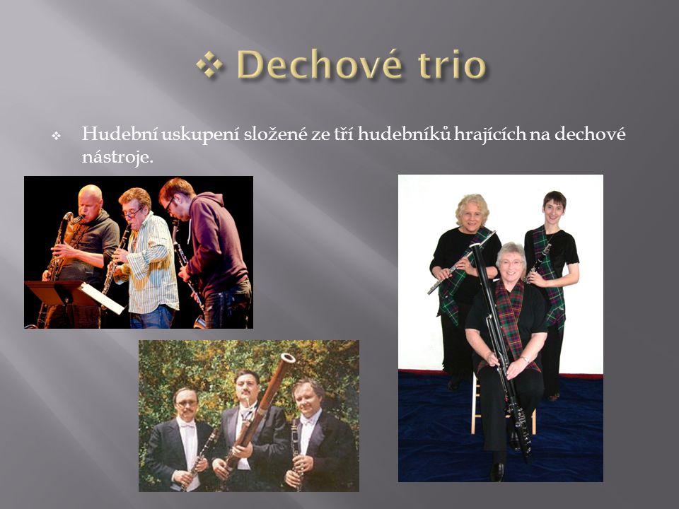  Hudební uskupení složené ze tří hudebníků hrajících na dechové nástroje.