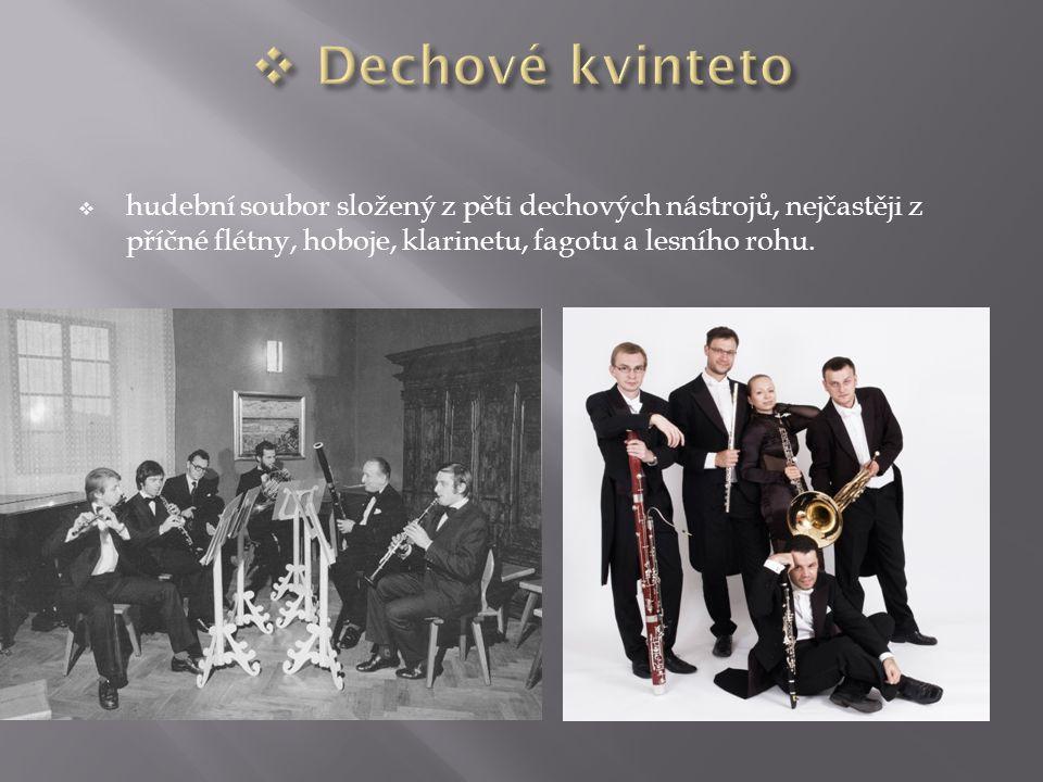  hudební soubor složený z pěti dechových nástrojů, nejčastěji z příčné flétny, hoboje, klarinetu, fagotu a lesního rohu.
