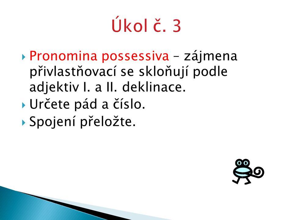  Pronomina possessiva – zájmena přivlastňovací se skloňují podle adjektiv I.