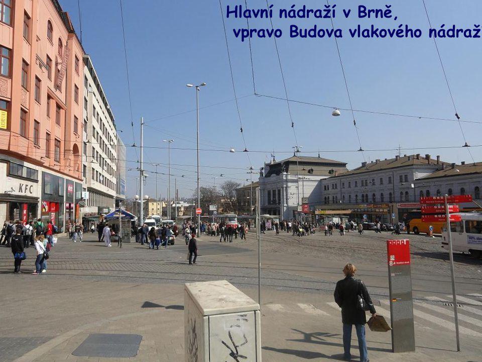 Zelný trh v Brně, který je největší v Česku