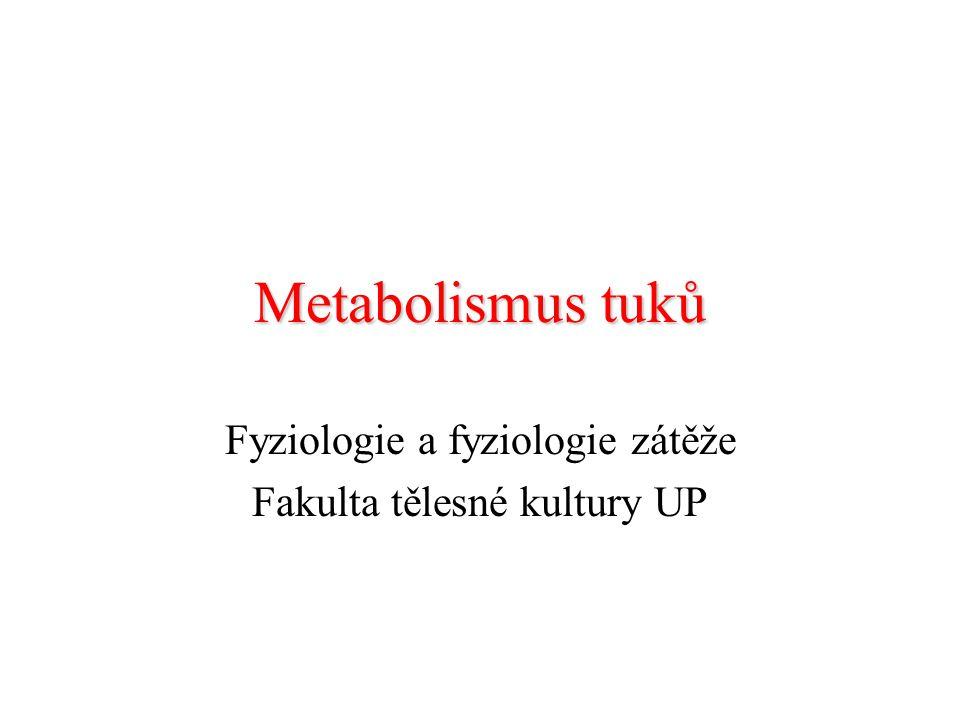 Metabolismus tuků Fyziologie a fyziologie zátěže Fakulta tělesné kultury UP