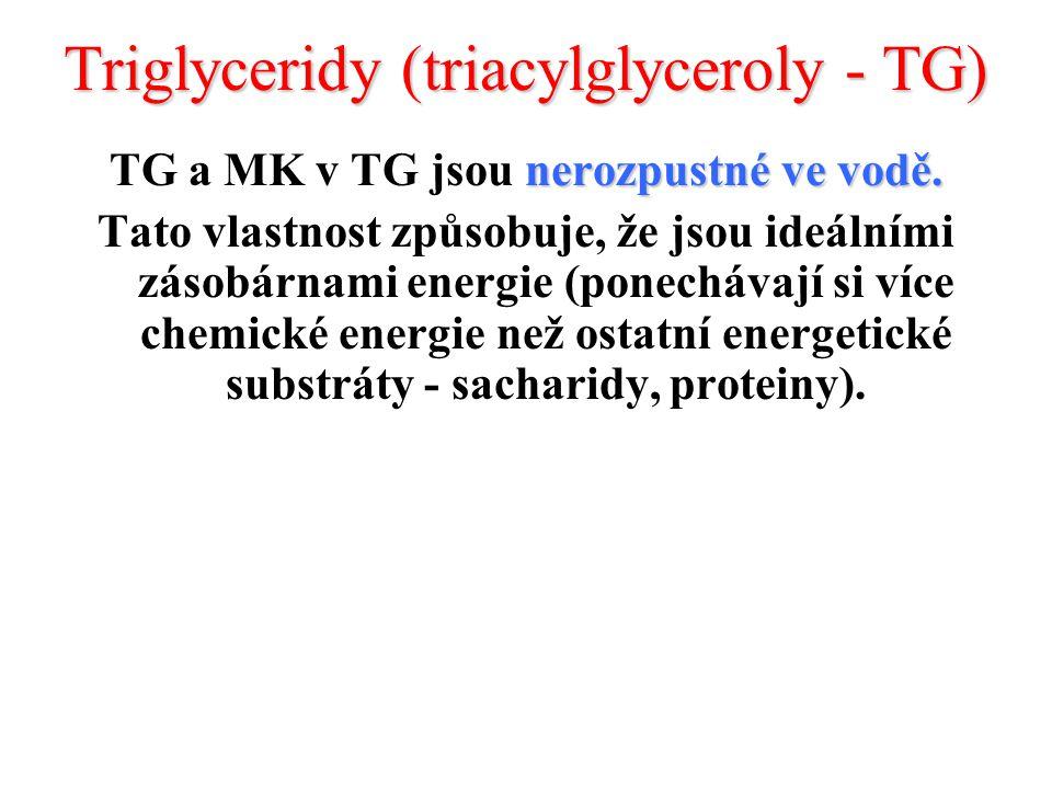Triglyceridy (triacylglyceroly - TG) nerozpustné ve vodě.