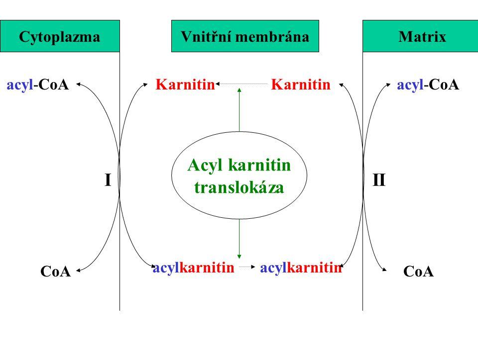 acyl-CoA CoA Karnitin acylkarnitin CytoplazmaVnitřní membránaMatrix III Acyl karnitin translokáza
