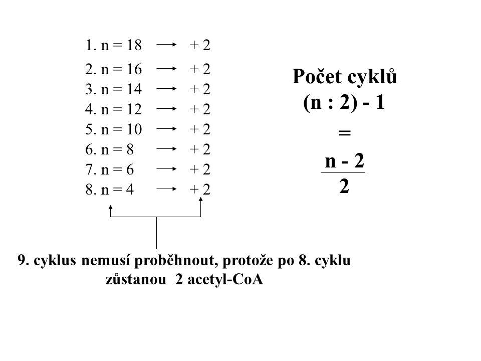1.n = 18 2. n = 16 3. n = 14 4. n = 12 5. n = 10 6.