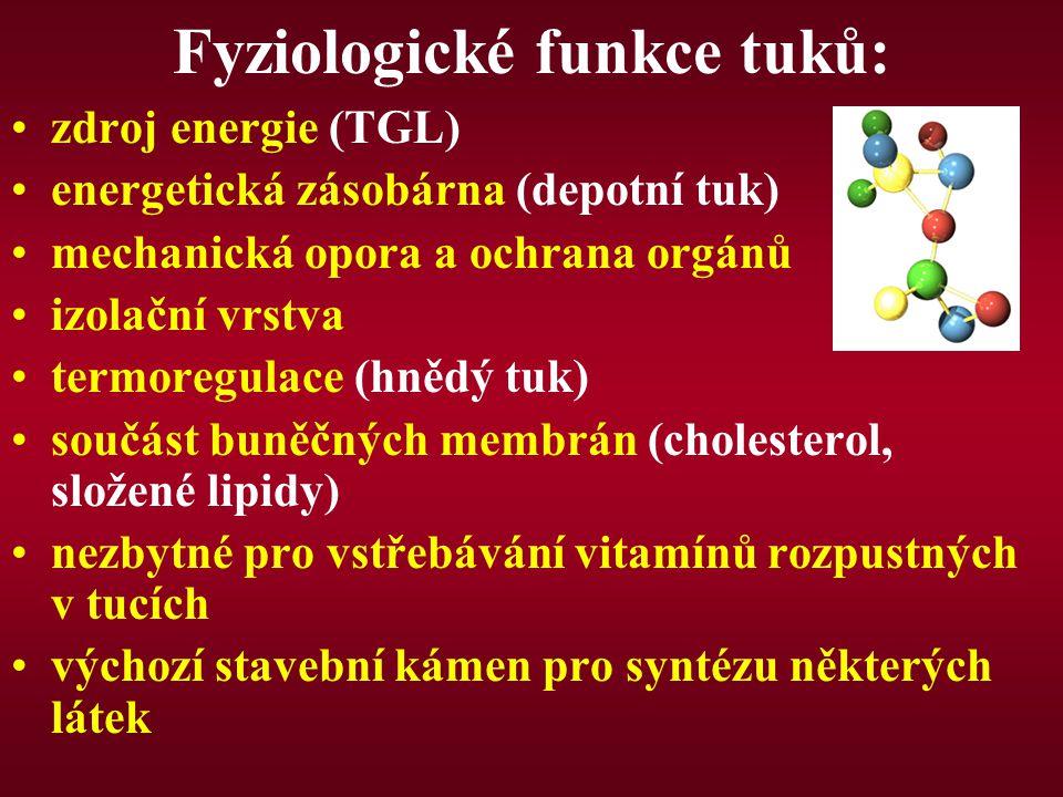 Fyziologické funkce tuků: zdroj energie (TGL) energetická zásobárna (depotní tuk) mechanická opora a ochrana orgánů izolační vrstva termoregulace (hně