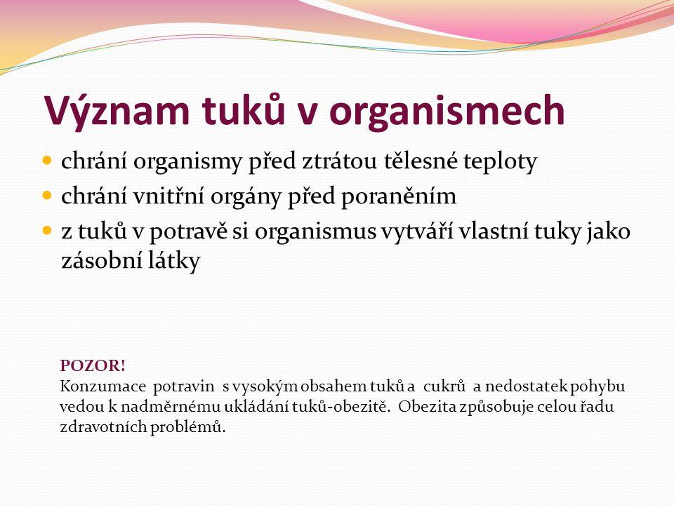 Význam tuků v organismech chrání organismy před ztrátou tělesné teploty chrání vnitřní orgány před poraněním z tuků v potravě si organismus vytváří vl
