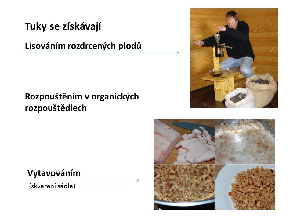 Tuky se získávají Lisováním rozdrcených plodů Vytavováním Rozpouštěním v organických rozpouštědlech (škvaření sádla)