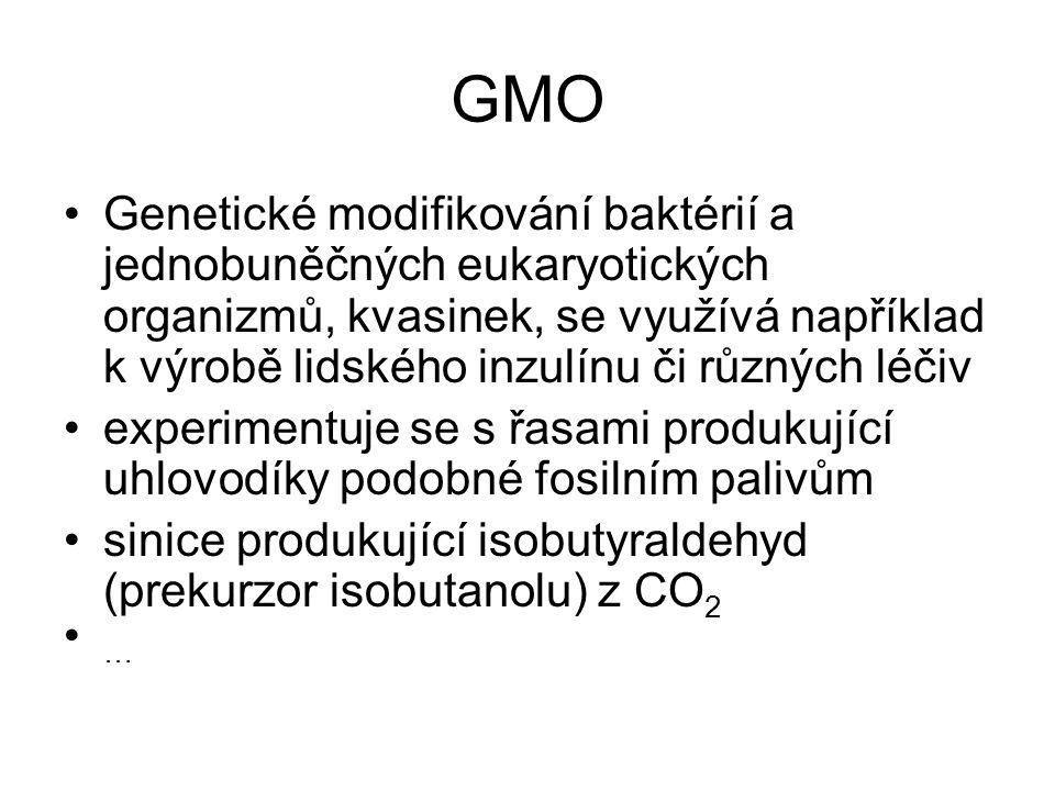 GMO Genetické modifikování baktérií a jednobuněčných eukaryotických organizmů, kvasinek, se využívá například k výrobě lidského inzulínu či různých lé