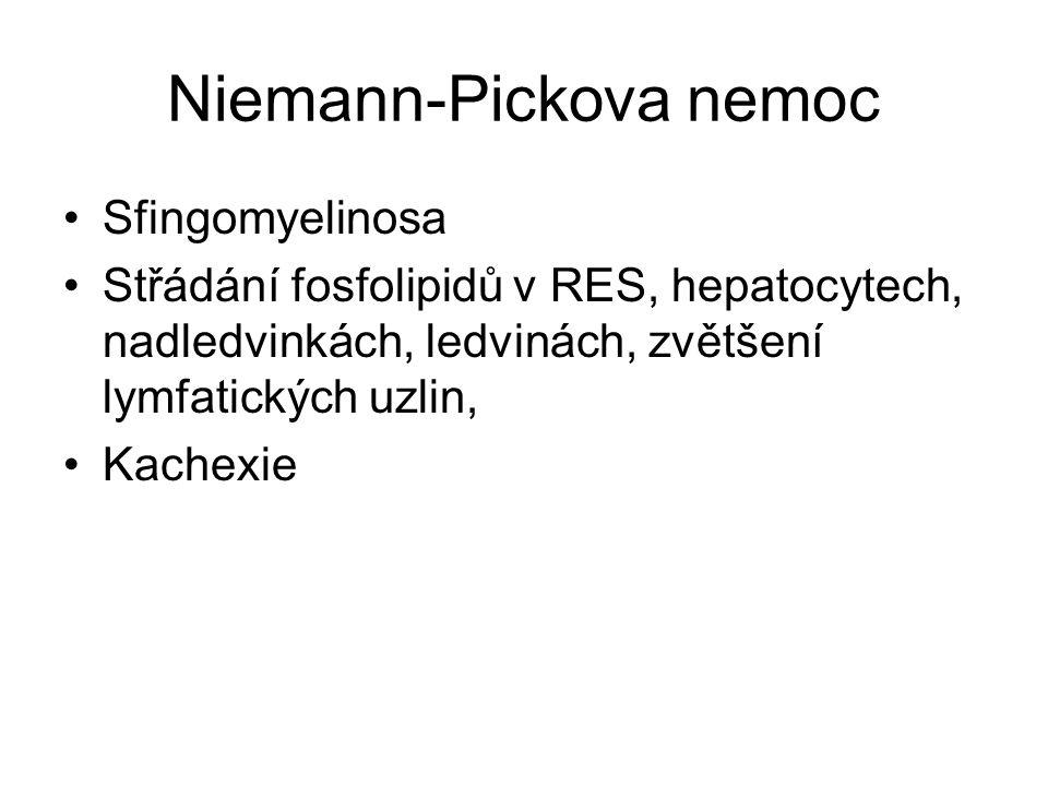 Niemann-Pickova nemoc Sfingomyelinosa Střádání fosfolipidů v RES, hepatocytech, nadledvinkách, ledvinách, zvětšení lymfatických uzlin, Kachexie