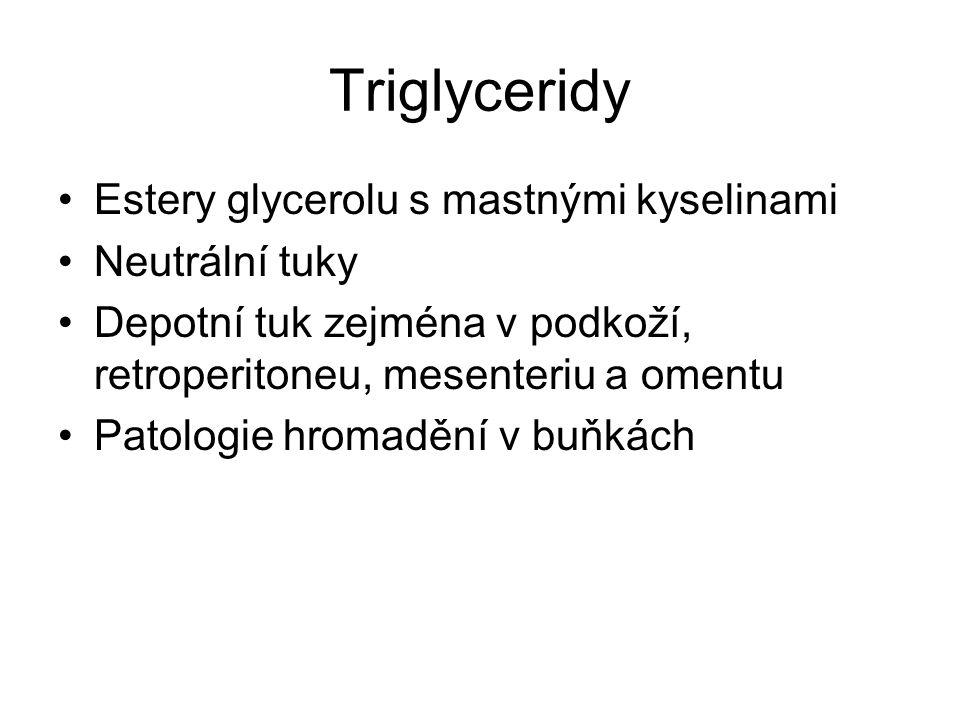 Triglyceridy Estery glycerolu s mastnými kyselinami Neutrální tuky Depotní tuk zejména v podkoží, retroperitoneu, mesenteriu a omentu Patologie hromad