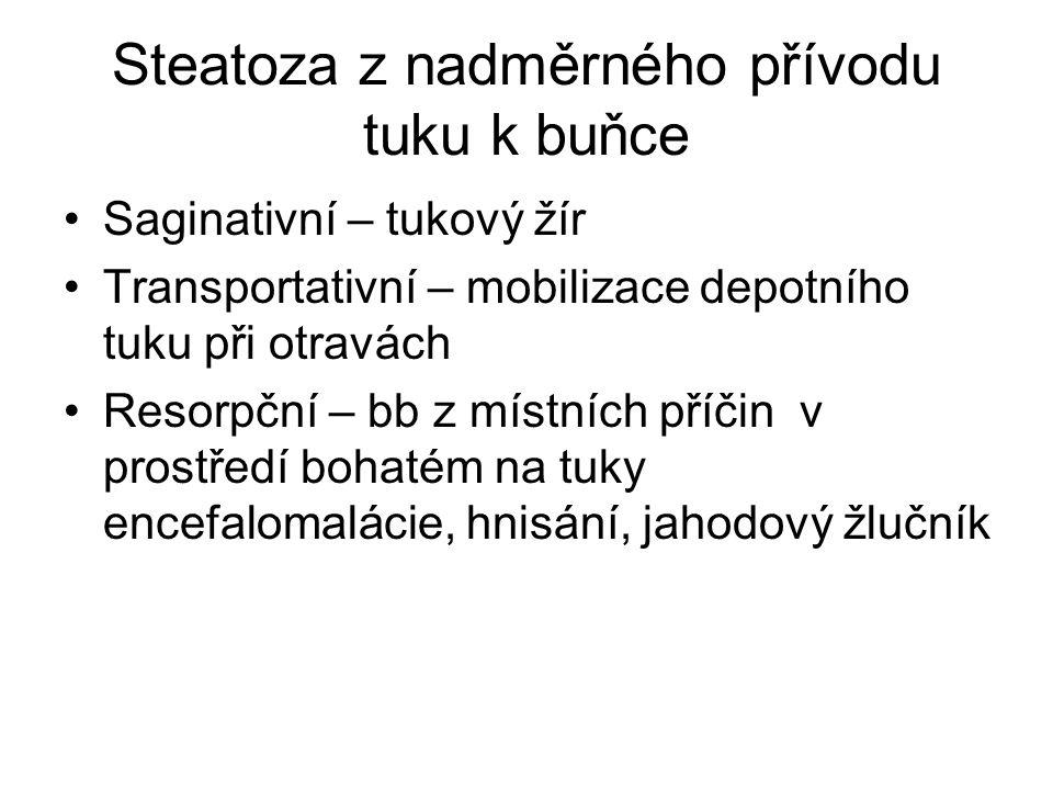 Steatosa z porušeného metabolismu buňky Anoxická- chronická venostasa v játrech, perniciosní anemie - tygrované srdce Malnutrice – porucha transportu lipidů z buňky Toxická – difterická myokarditida (porucha přenosu mastných kyselin do mitochodrii)