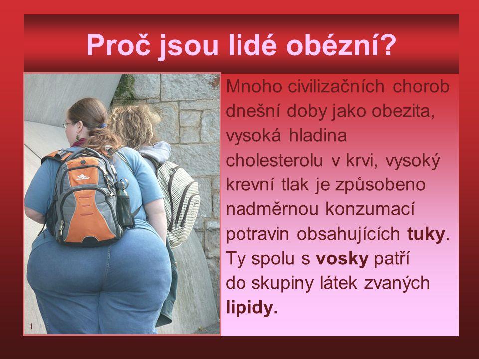 Proč jsou lidé obézní? Mnoho civilizačních chorob dnešní doby jako obezita, vysoká hladina cholesterolu v krvi, vysoký krevní tlak je způsobeno nadměr