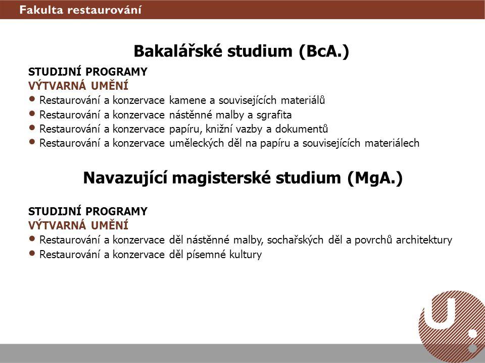 Bakalářské studium (BcA.) STUDIJNÍ PROGRAMY VÝTVARNÁ UMĚNÍ Restaurování a konzervace kamene a souvisejících materiálů Restaurování a konzervace nástěn