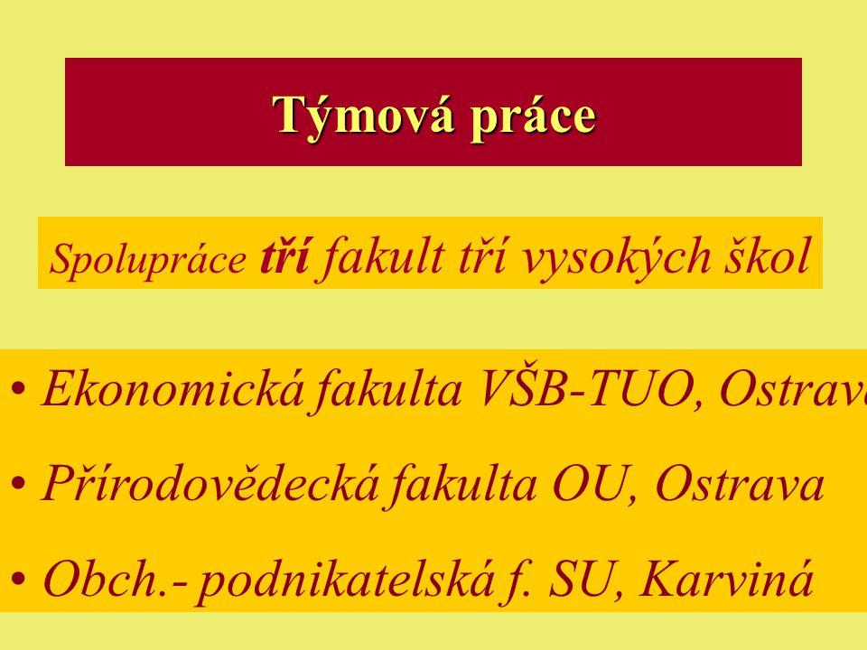 Ostrava 2001eLearning5 Týmová práce Spolupráce tří fakult tří vysokých škol Ekonomická fakulta VŠB-TUO, Ostrava Přírodovědecká fakulta OU, Ostrava Obch.- podnikatelská f.