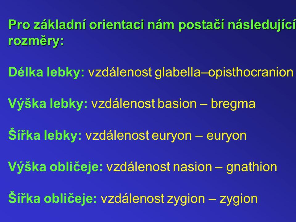 Pro základní orientaci nám postačí následující rozměry: Pro základní orientaci nám postačí následující rozměry: Délka lebky: vzdálenost glabella–opisthocranion Výška lebky: vzdálenost basion – bregma Šířka lebky: vzdálenost euryon – euryon Výška obličeje: vzdálenost nasion – gnathion Šířka obličeje: vzdálenost zygion – zygion