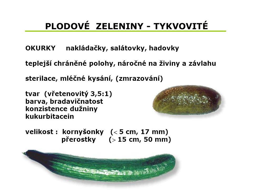PLODOVÉ ZELENINY - TYKVOVITÉ OKURKY nakládačky, salátovky, hadovky teplejší chráněné polohy, náročné na živiny a závlahu sterilace, mléčné kysání, (zmrazování) tvar (vřetenovitý 3,5:1) barva, bradavičnatost konzistence dužniny kukurbitacein velikost : kornyšonky ( 5 cm, 17 mm) přerostky ( 15 cm, 50 mm)