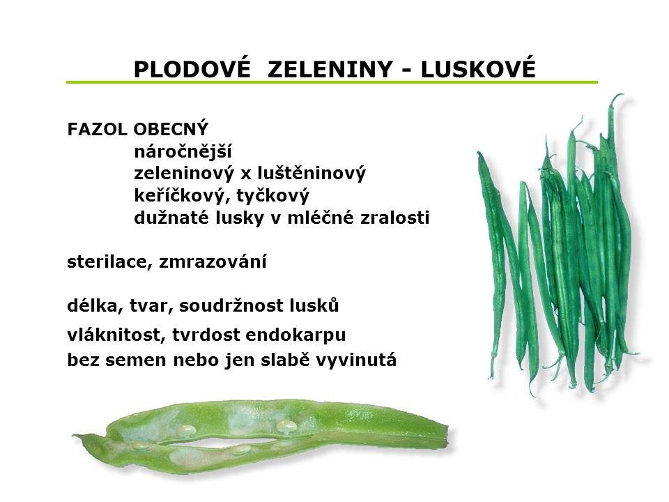 PLODOVÉ ZELENINY - LUSKOVÉ FAZOL OBECNÝ náročnější zeleninový x luštěninový keříčkový, tyčkový dužnaté lusky v mléčné zralosti sterilace, zmrazování délka, tvar, soudržnost lusků vláknitost, tvrdost endokarpu bez semen nebo jen slabě vyvinutá