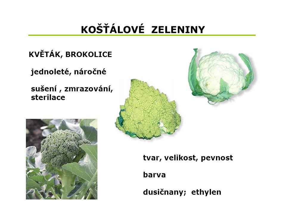 KOŠŤÁLOVÉ ZELENINY KVĚTÁK, BROKOLICE jednoleté, náročné sušení, zmrazování, sterilace tvar, velikost, pevnost barva dusičnany; ethylen
