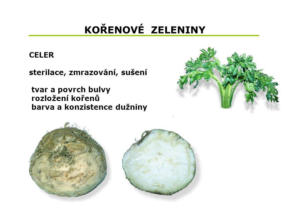 KOŘENOVÉ ZELENINY CELER sterilace, zmrazování, sušení tvar a povrch bulvy rozložení kořenů barva a konzistence dužniny