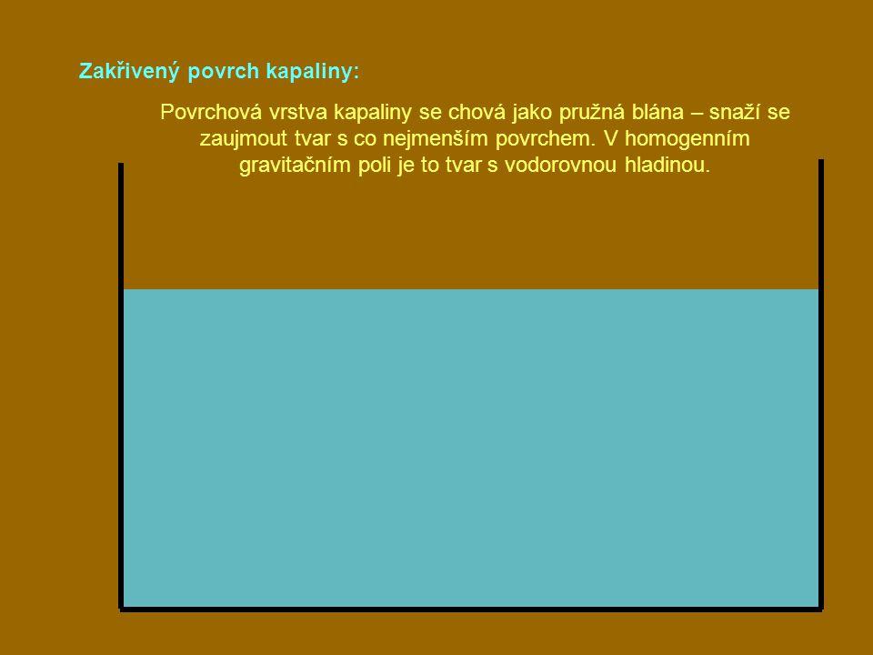 Zakřivený povrch kapaliny: Povrchová vrstva kapaliny se chová jako pružná blána – snaží se zaujmout tvar s co nejmenším povrchem. V homogenním gravita