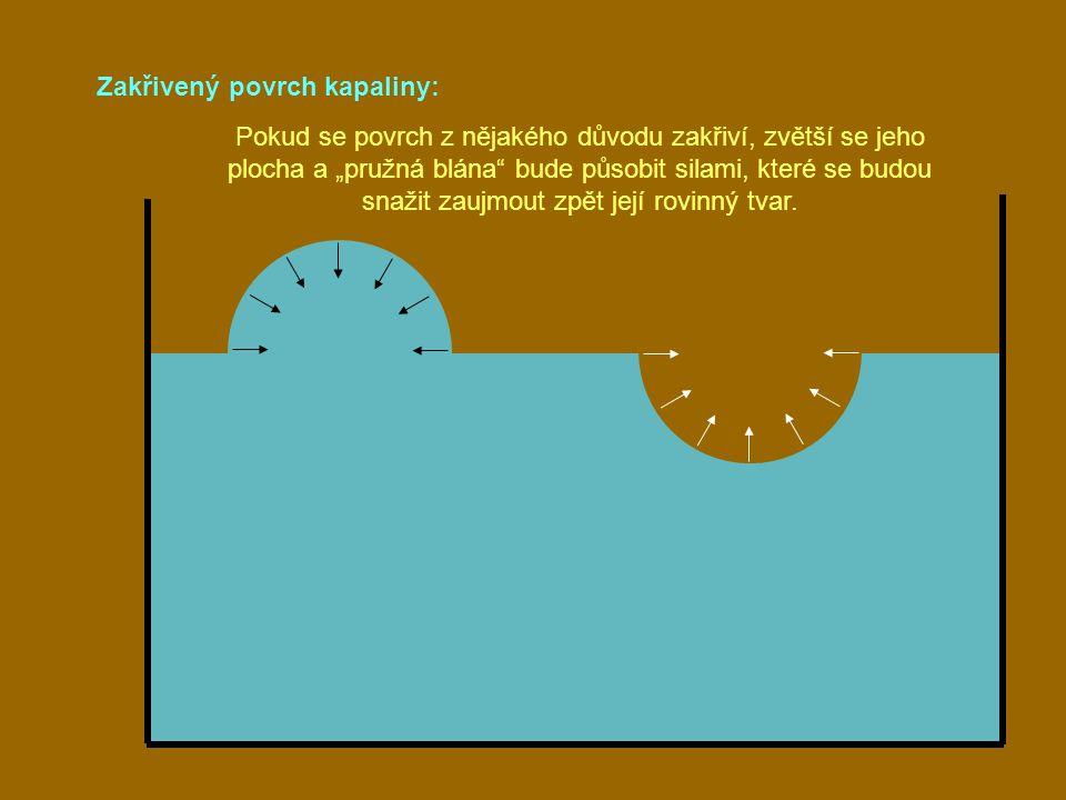 """Zakřivený povrch kapaliny: Pokud se povrch z nějakého důvodu zakřiví, zvětší se jeho plocha a """"pružná blána"""" bude působit silami, které se budou snaži"""