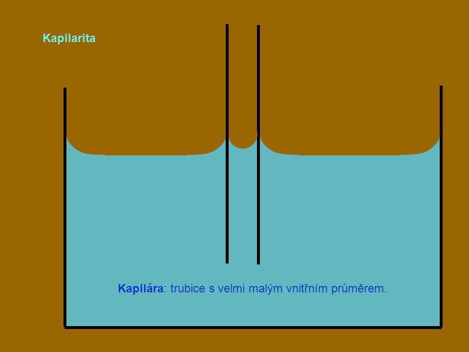 Kapilarita Kapilára: trubice s velmi malým vnitřním průměrem.