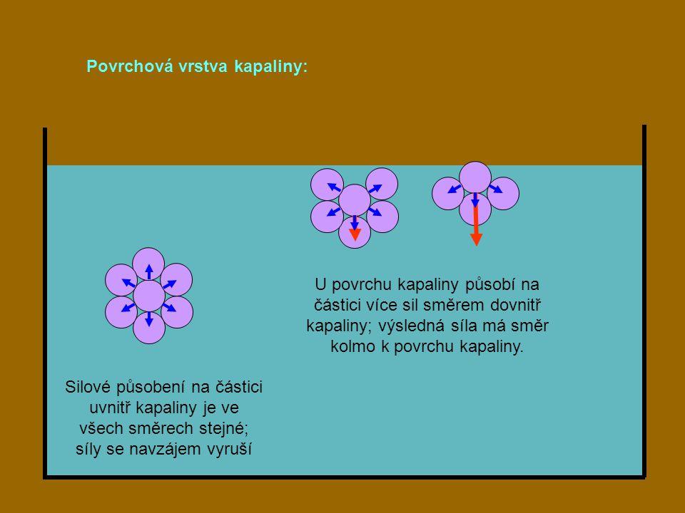 Silové působení na částici uvnitř kapaliny je ve všech směrech stejné; síly se navzájem vyruší Povrchová vrstva kapaliny: U povrchu kapaliny působí na