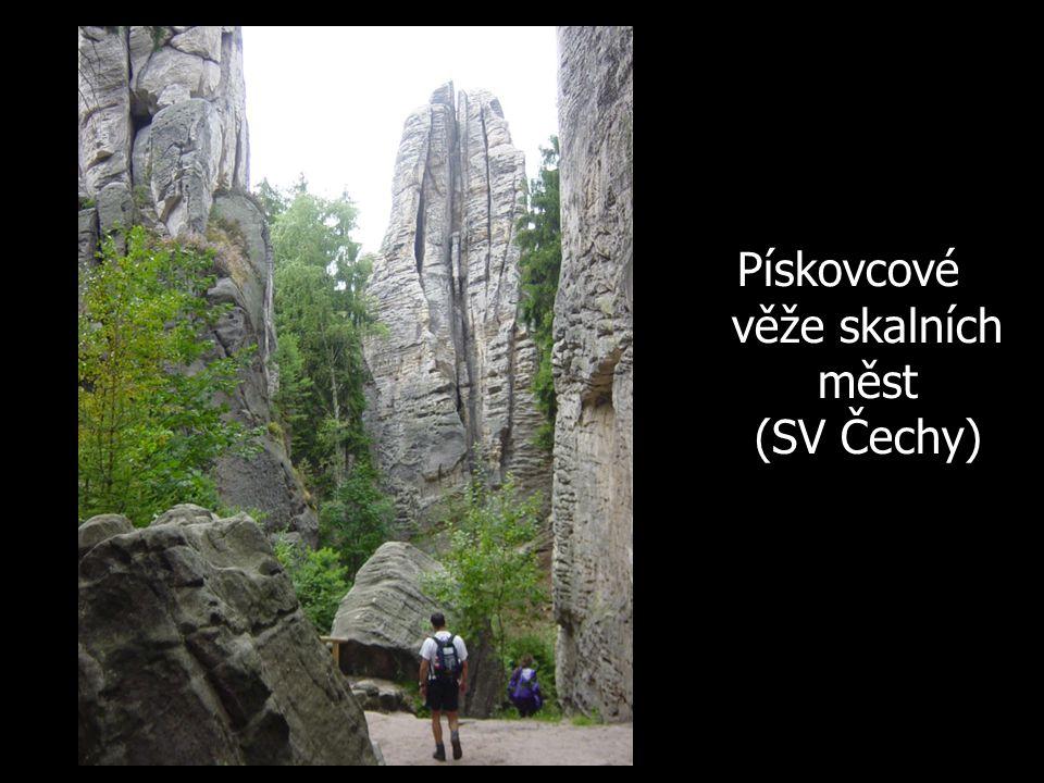Pískovcové věže skalních měst (SV Čechy)