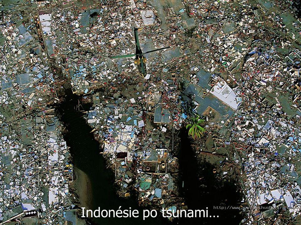 Indonésie po tsunami…