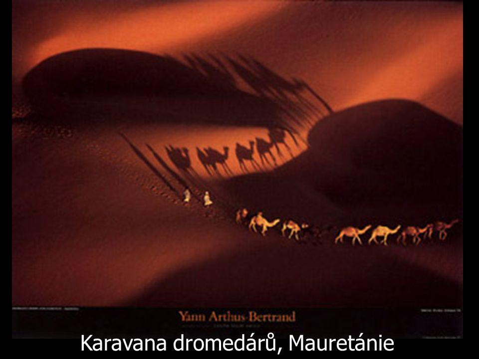 Karavana dromedárů, Mauretánie