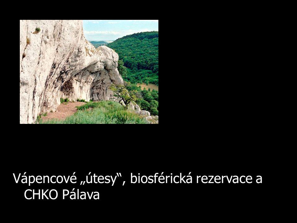 "Vápencové ""útesy"", biosférická rezervace a CHKO Pálava"