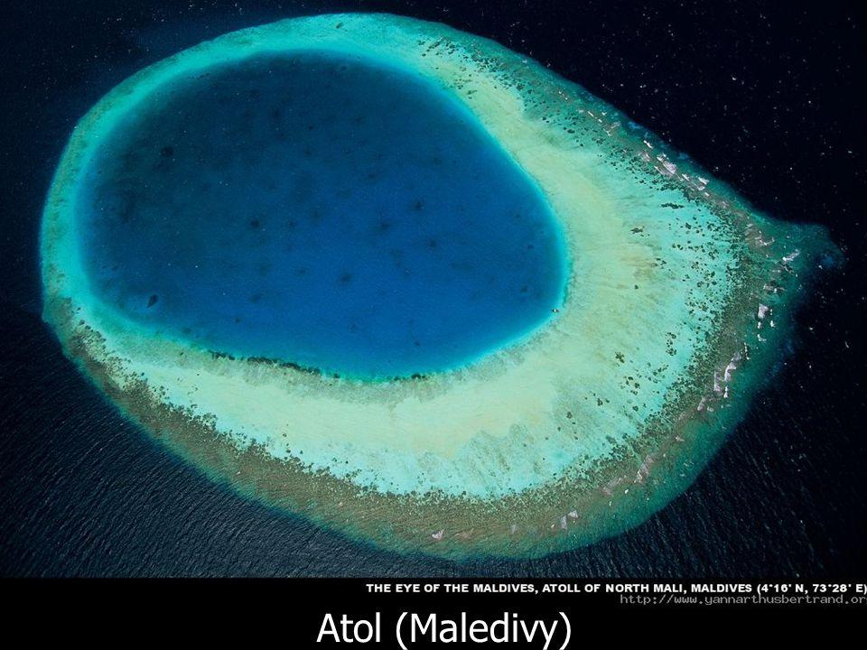Atol (Maledivy)