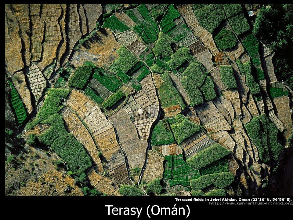 Terasy (Omán)