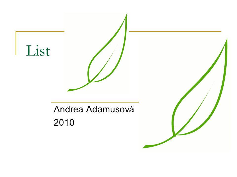 List Andrea Adamusová 2010