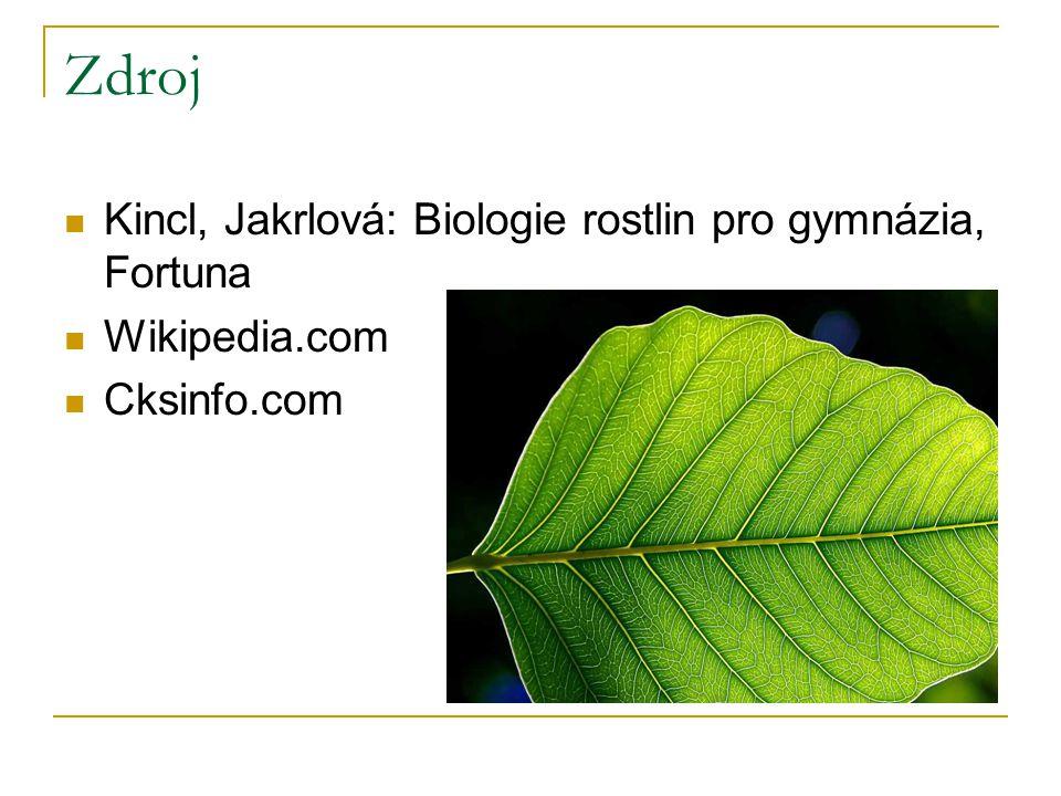 Zdroj Kincl, Jakrlová: Biologie rostlin pro gymnázia, Fortuna Wikipedia.com Cksinfo.com