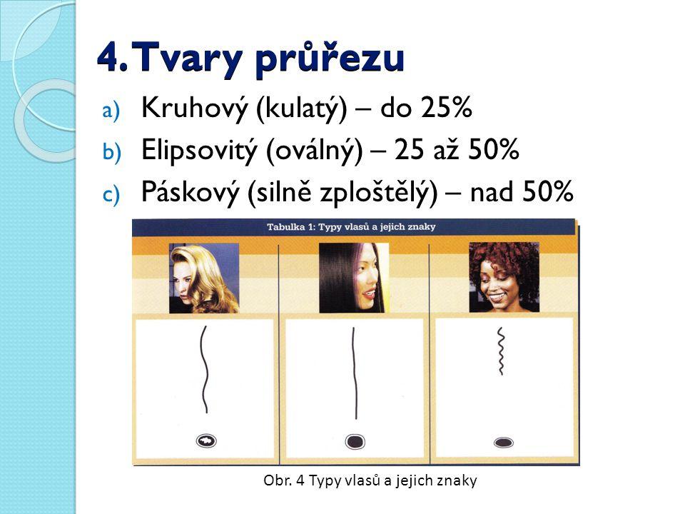 4. Tvary průřezu a) Kruhový (kulatý) – do 25% b) Elipsovitý (oválný) – 25 až 50% c) Páskový (silně zploštělý) – nad 50% Obr. 4 Typy vlasů a jejich zna