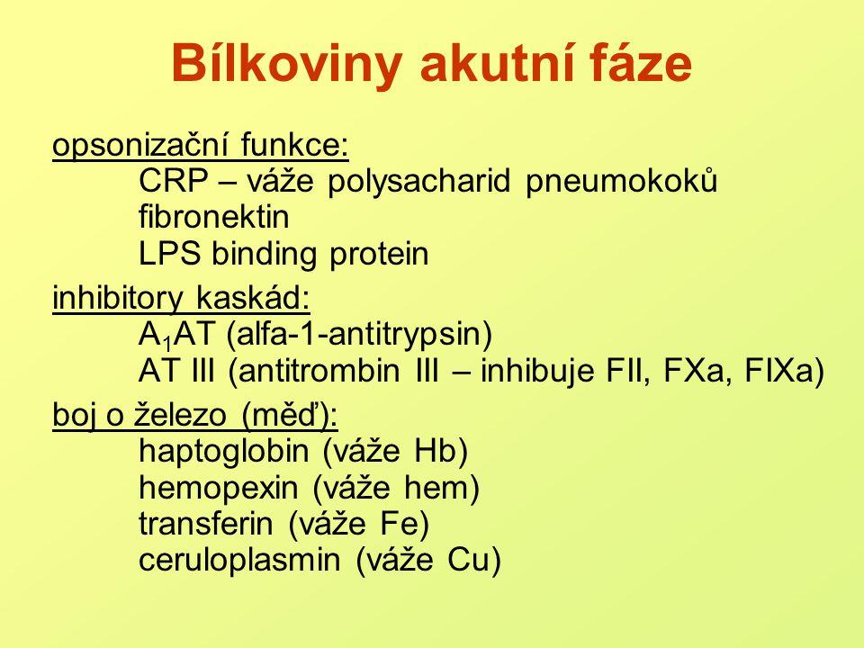 Hormonální změny a)stres  aktivace IL-1, TNF alfa katecholaminy, glukagon, STH, inzulin b)kontra-regulační hormony kortikosteroidy c)luxusní hormony (sekrece potlačena) tyroxin, T3, androgeny, estrogeny .
