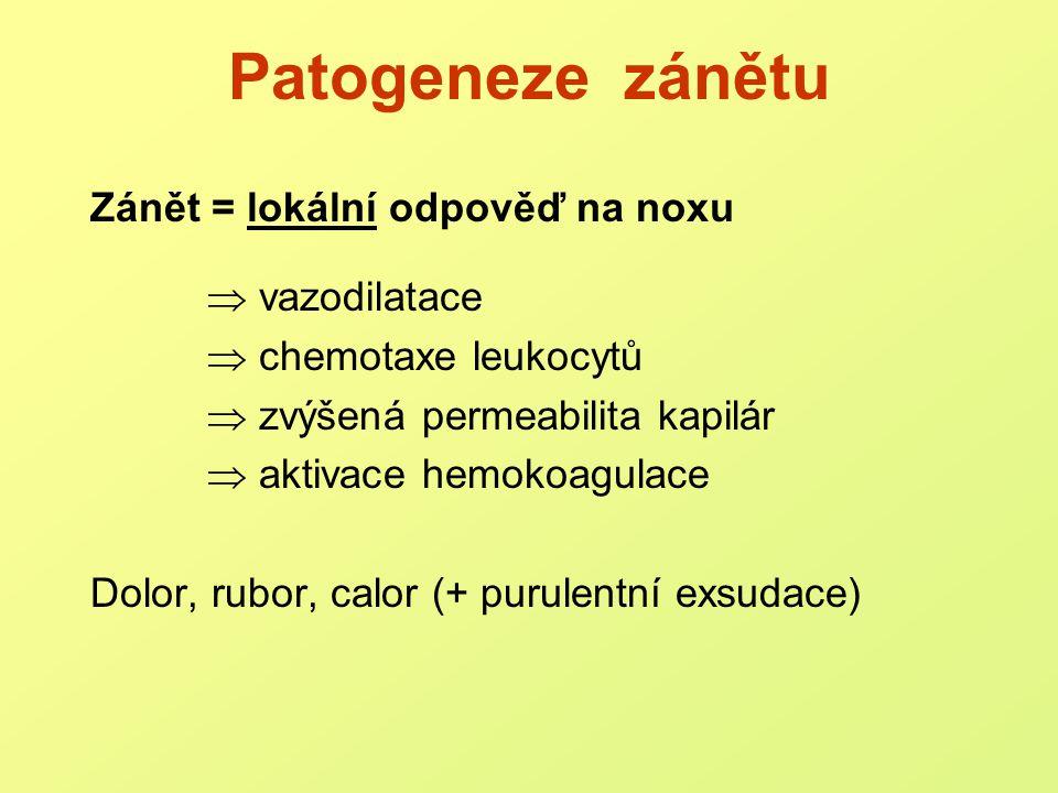 Patogeneze zánětu Signální molekuly: peptidoglykanmakrofágy lipoproteinykomplement lipopolysacharidy HF, kininový systém