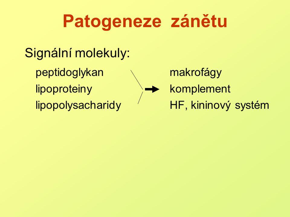 Úloha makrofágů, APC toll-like receptory (PG, LP  TLRs 1,2,6; LPS  TLR 4)  aktivace, fagocytóza  prezetace antigenů  tvorba mediátorů zánětu TNF-  : aktivace endotelií, zvýšená permeabilita up-regulace hemokoagulace proteokatabolismus podpora apoptózy (tumory, infikované bb) IL-1: horečka, aktivace PMN, bílkoviny akutní fáze aktivace specifické imunity
