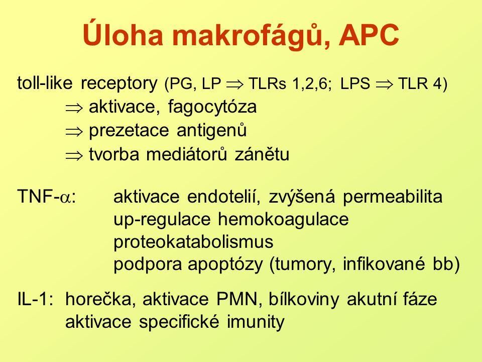 Kaskáda prozánětlivých mediátorů: mediátory 1.řádu: TNF- , IL-1, IL-6 mediátory 2.
