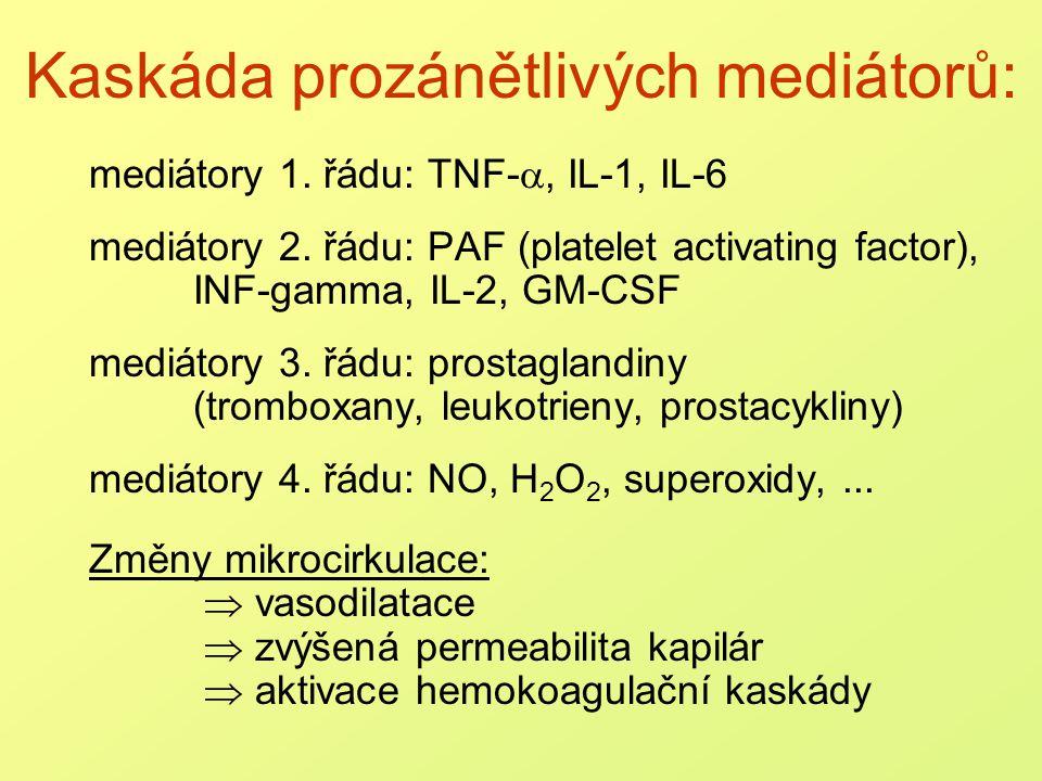 Komplementová kaskáda Rozpoznání cizorodých látek: classical pathway: C1 + C2 + C4  C142 alternative pathway: C3 aktivace C3 Amplifikace: C3, C5 prozánětlivé mediátory (C3a, C5a) vasodilatace, chemotaxe PMN označení nebezpečných buněk (C3b, C5b) Efektorová funkce: C6 + C7 + C8 + C9  C6789