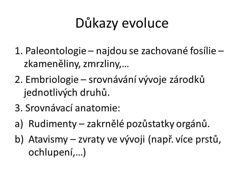 Důkazy evoluce 1. Paleontologie – najdou se zachované fosílie – zkameněliny, zmrzliny,… 2.