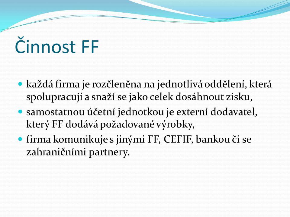 Činnost FF každá firma je rozčleněna na jednotlivá oddělení, která spolupracují a snaží se jako celek dosáhnout zisku, samostatnou účetní jednotkou je