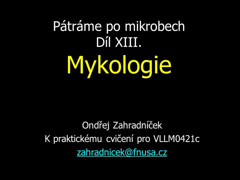 Pátráme po mikrobech Díl XIII.
