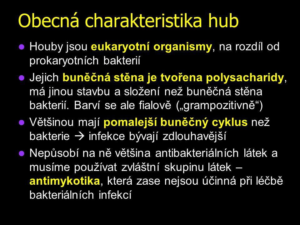 Onychomycosis www.itg.be