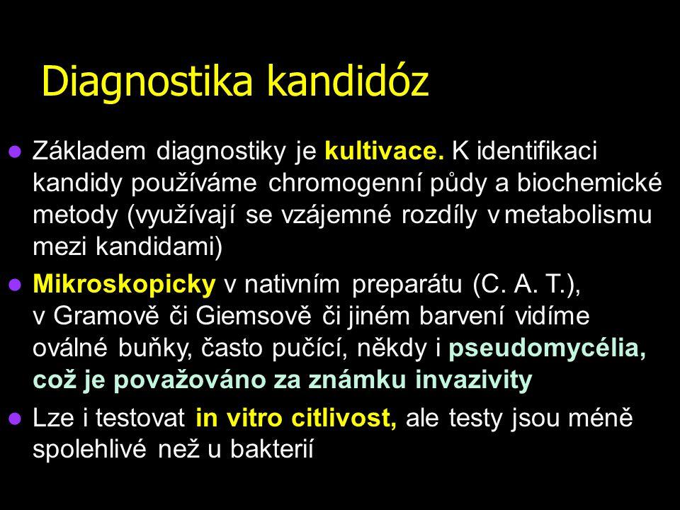 Odběry u kandidóz U kožní a slizniční formy se používají výtěry nejlépe v transportní půdě FungiQuick nebo (pouze u výtěrů z.genitálií) C.