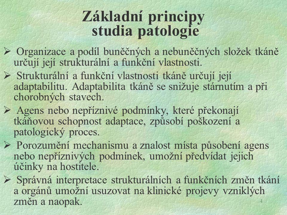 4 Základní principy studia patologie  Organizace a podíl buněčných a nebuněčných složek tkáně určují její strukturální a funkční vlastnosti.  Strukt
