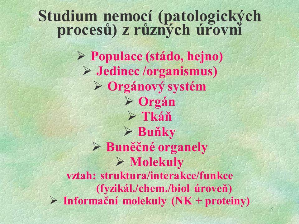 5 Studium nemocí (patologických procesů) z různých úrovní  Populace (stádo, hejno)  Jedinec /organismus)  Orgánový systém  Orgán  Tkáň  Buňky 
